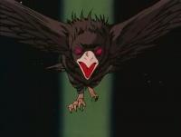 Eagle Clutch.jpg